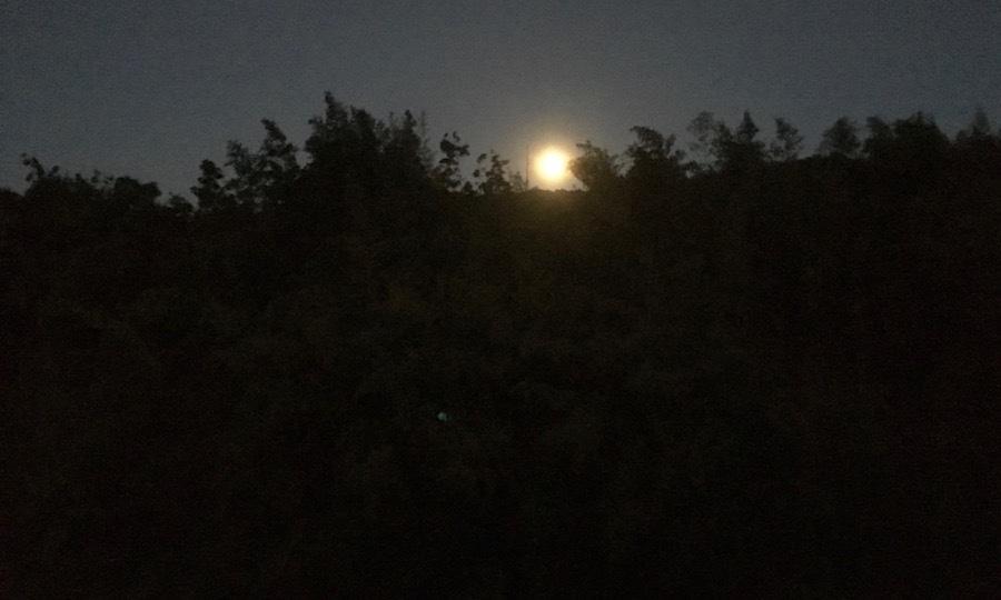 Madame la lune