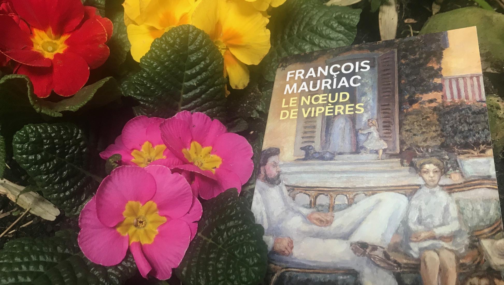 Le noeud de vipères François Mauriac